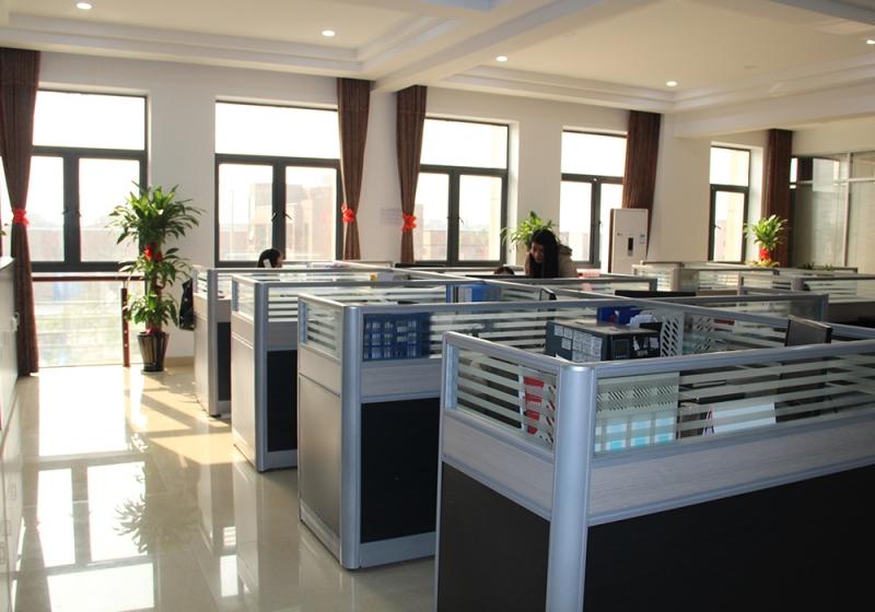 The company environment